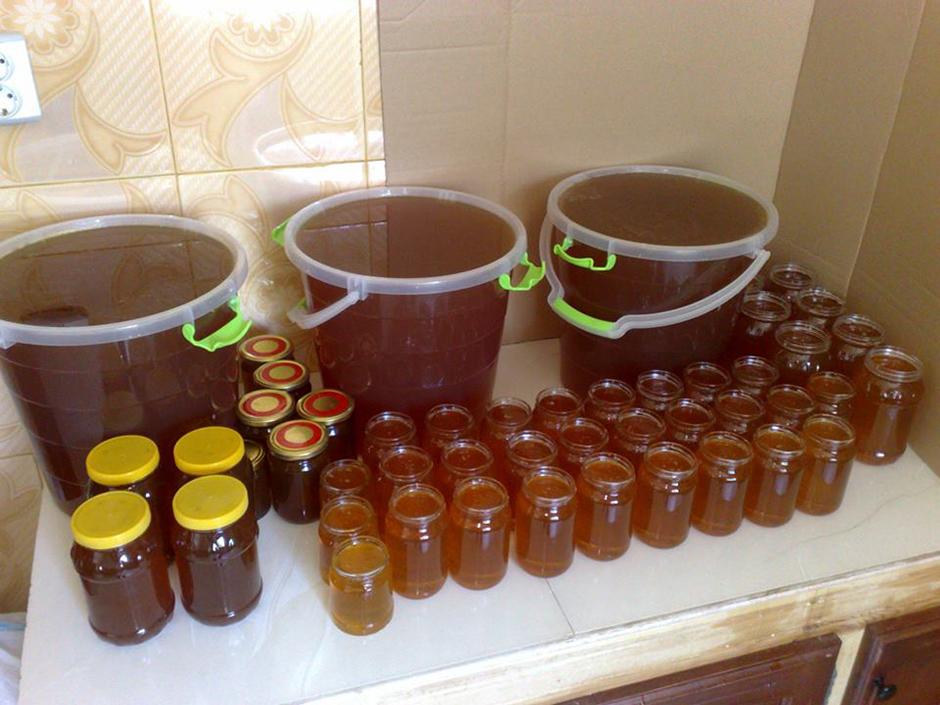 Kamal Smaili - apiculteur à Tirmitine en Algérie