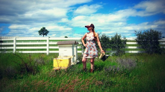 Piqûres d'abeilles et de guêpes - les premiers soins