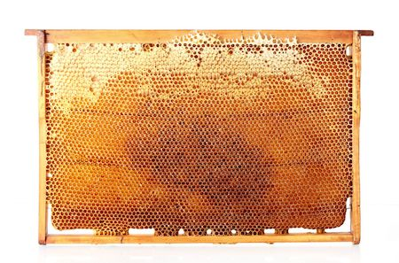 Savons à froid bio au miel et à la cire d'abeille
