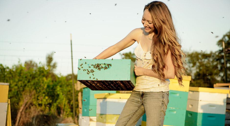piq res d 39 abeilles et de gu pes comment les soigner et. Black Bedroom Furniture Sets. Home Design Ideas